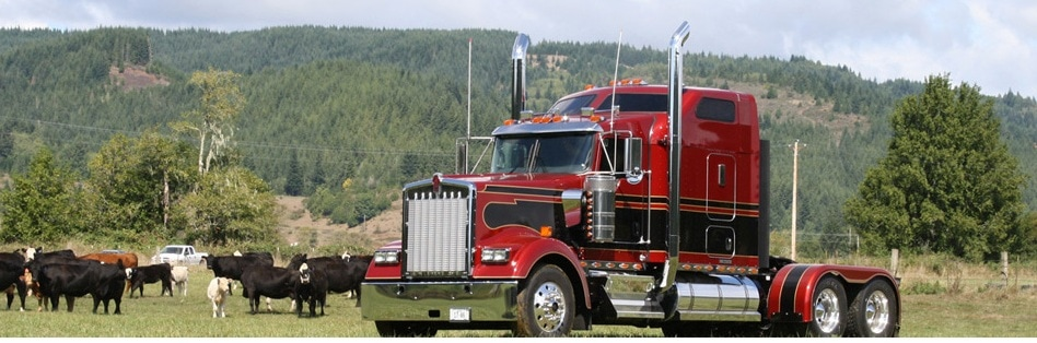 Custom Kenworth Truck